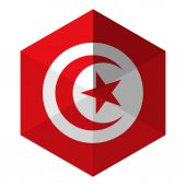 Tunisia Flag Hexagon Flat Icon Button — Stock Vector