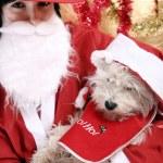 Santa claus — Stock Photo #57435617