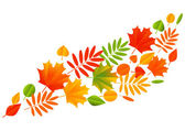 Autumn color leaves — Stock Vector