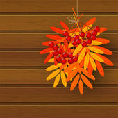 Autumn leaves with rowan — Stock Vector
