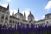 Hungarian Parliament building — Стоковое фото