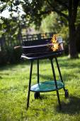 Fire, Hot grilling — Stock Photo