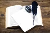 Quill Feather and Ink on open book — Stock Photo
