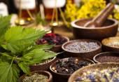 Herbs medicine — Stock Photo