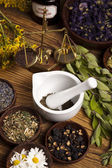 Alternative medicine, dried herbs — Stock Photo