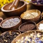 Fresh medicinal herbs — Stock Photo #52083001