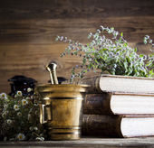 Medical herbs with mortar — Foto Stock
