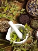 Natural remedy and mortar — Stock Photo