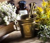 Natural medicine, herbs, mortar — Stock Photo