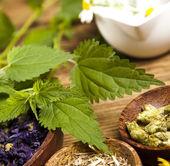 Medical herbs — Stock Photo