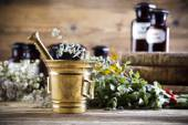 Medical herbs and mortar — Stock Photo