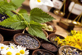 Herbs medicine — Stock Photo