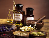 Alternative medicine, dried herbs — Stock Photo