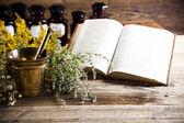 Herbal medicine and book — Foto Stock