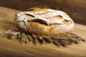Baked bread with wheat seeds — Stock Photo