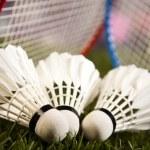 Shuttlecocks with badminton rackets — Stock Photo #52109425