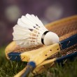Shuttlecock with badminton rackets — Stock Photo #52109615