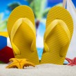 Colorful flip flops — Stock Photo #52123045