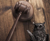 Wooden mallet of judge with owl — Stock Photo