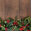 Traditional Winter Border — Stock Photo #52498243