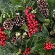 Постер, плакат: Winterberry Holly