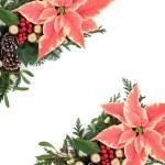 Poinsettia Floral Border — Stock Photo #53681875