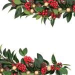 Christmas Holly Border — Stock Photo #54004043