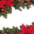 Christmas Floral Border — Stock Photo #54004945