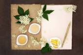 Elderflower Champagne Ingredients — Stock Photo
