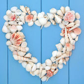 Heart of Seashells — Zdjęcie stockowe