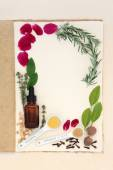 Pagan Love Potion Ingredients — Stock fotografie