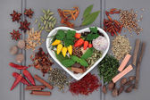 Spice and Herb Sampler — Stock Photo