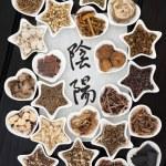 Постер, плакат: Yin Yang Chinese Herbal Medicine