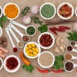 Herb and Spice Ingredients — Stock Photo #66353067