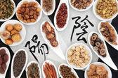 Yin and Yang Herbs — Stock Photo