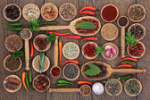 Herb and Spice Food Sampler — Stock Photo