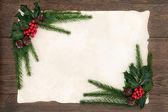 Christmas Floral Border — Stock Photo