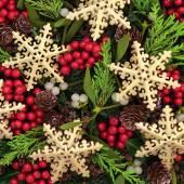 Snowflake Delight — Stock Photo