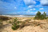 Baltic sea sand dunes — Stock Photo