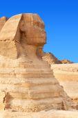 The Sphinx — Stock Photo