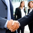 Handshake in front of business people — Stock Photo #54929471