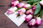 Pink tulips with postcard — Stock Photo