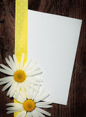 Greeting post card — Stock Photo