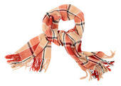 The scarf — Stock Photo