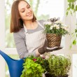 Woman doing some gardening at home — Стоковое фото #72383767