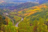 Autumn forest with river — Stock Photo