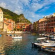 Vernazza Harbor — Stock Photo #54718019