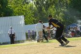 Wicket-keeper — Fotografia Stock
