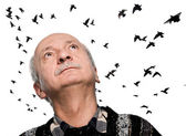 Mature man looking up on flying birds — Stock Photo