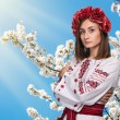 Young girl in the Ukrainian national suit — Stock Photo #70848877